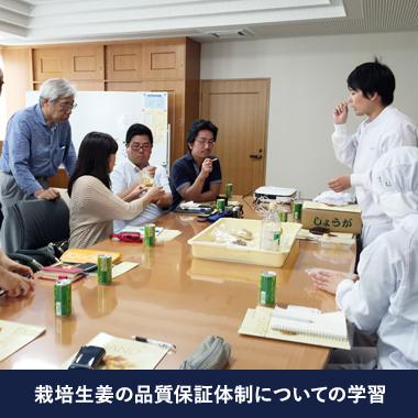 栽培生姜の品質保証体制についての学習